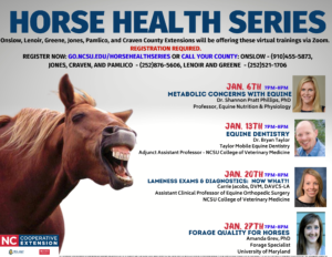 Cover photo for Horse Health Series